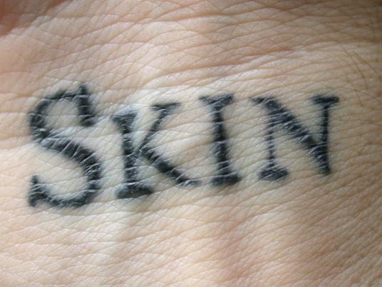skin a mortal work of art